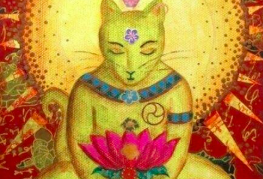Leggenda buddista sui gatti che ha origine in Thailandia